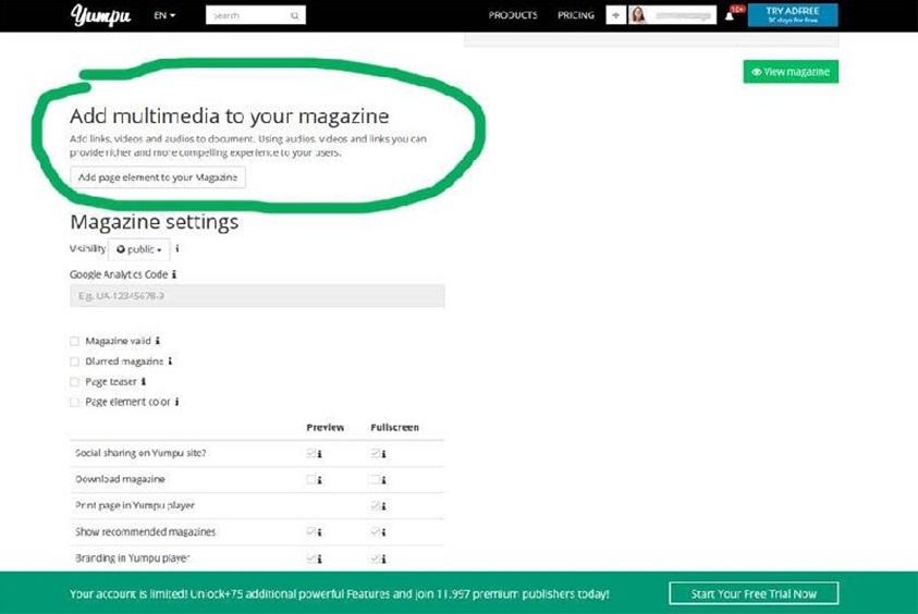 Add multimedia online flipbook